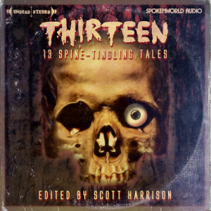Scott Harrison's Horror Audio Anthology THIRTEEN