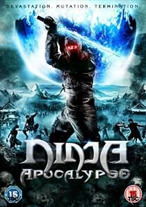 Ninja Apocalypse [DVD]