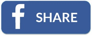 fb-big-share